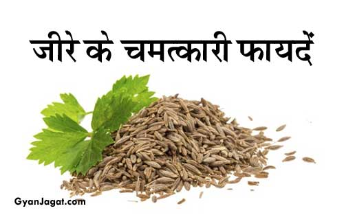 Cumin Jeera Khane Ke Fayde Health Benefits in Hindi