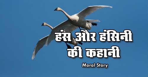 Hans Aur Hansini GyanVardhak Kahani Hindi Moral Story