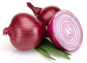 Onion Benefits in Hindi
