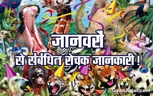 Animals General Knowledge Rochak Jankari in Hindi
