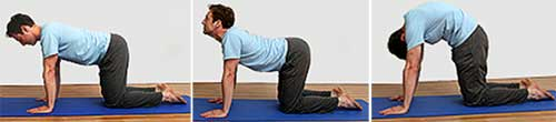 Marjorie Aasan Back Pain Exercises Tips in Hindi